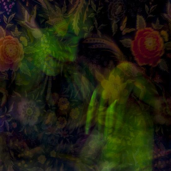 ritratto fotografico in light painting titania di donne e di dee