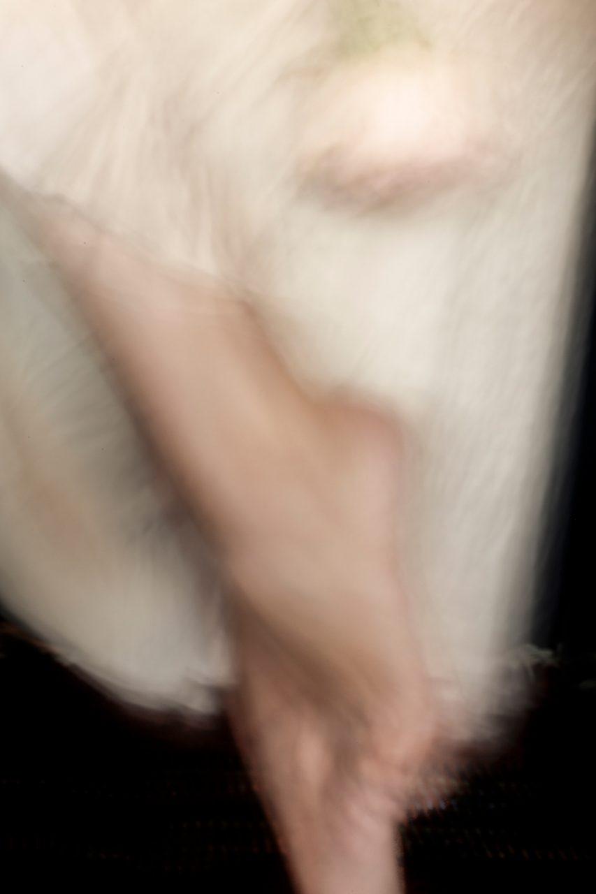 La danza alle bonicalzi sguardi 2017