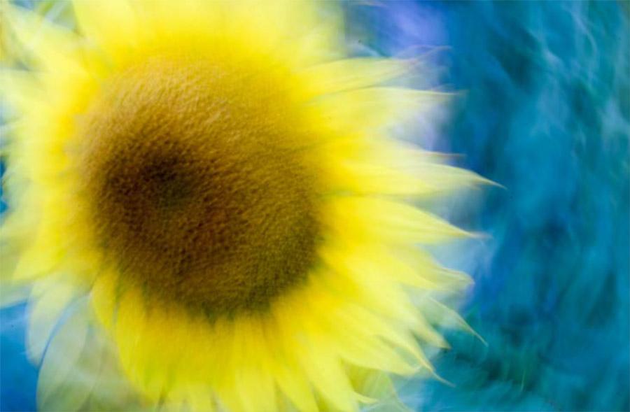 Ama - la luce e la fotografia d'arte, metodo AITO, allebonicalzi